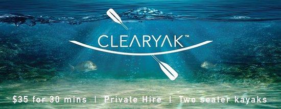 Leigh, New Zealand: Clearyak