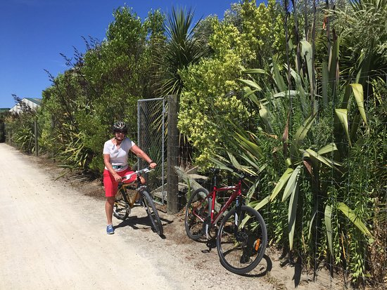Clive, New Zealand: The cycle path at the end of the garden and two of the free bikes (and helmets) available.