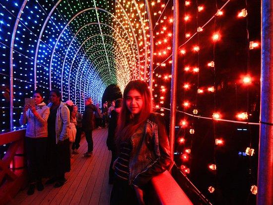 New Plymouth, New Zealand: bridge of lights