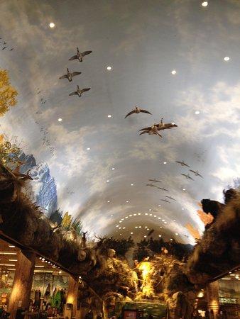 Tsawwassen, Καναδάς: Diorama with aquarium