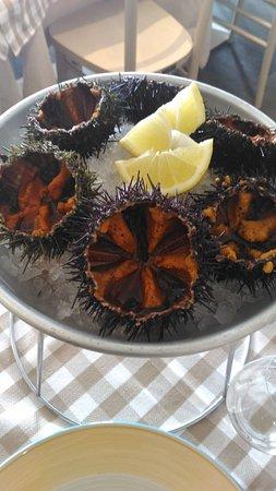 Trezzano sul Naviglio, Italie : Pesce & Farina
