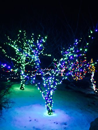 Coastal Maine Botanical Gardens: Garden's Aglow-Beautiful!