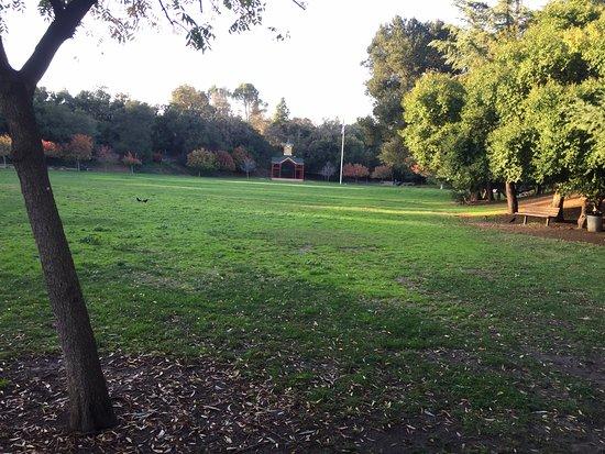 Los Gatos, CA: Big meadow