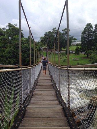 米娜溪照片