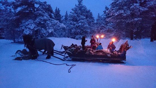 Tynset, Noruega: Koselig med bål og mat ute.  hestene raster og vi koser oss.