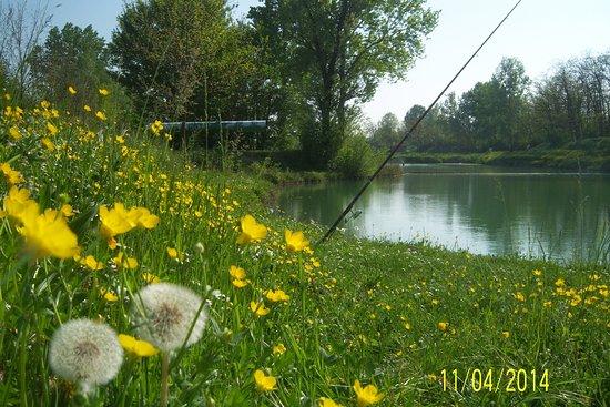Parco Palustre