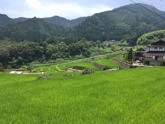 Ini Rice Terraces