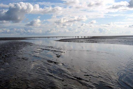 Pieterburen, Países Bajos: Het wad