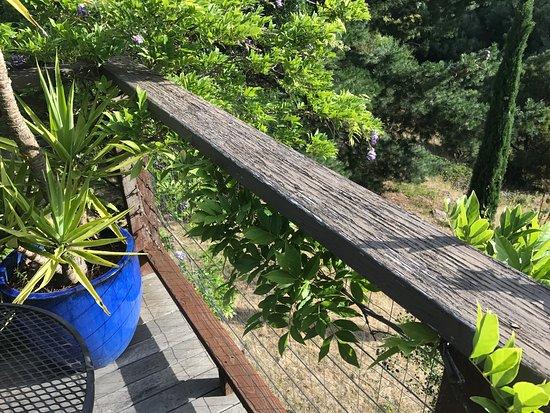 Hepburn Springs, Australia: photo9.jpg