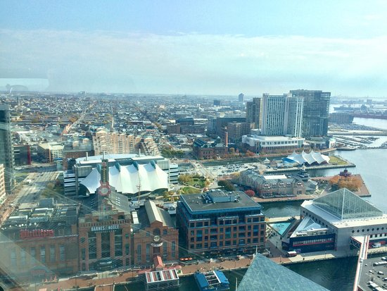 Top of the World Observation Level: photo6.jpg