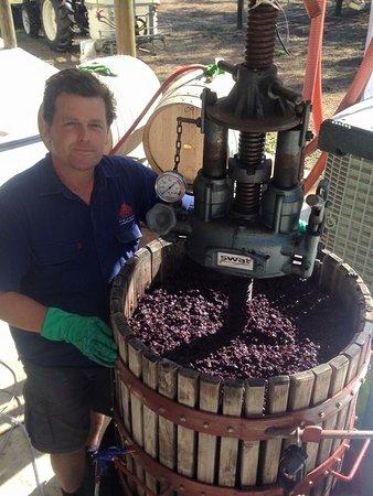 Swan Valley, Avustralya: Lloyd crushing the fruit the traditional way