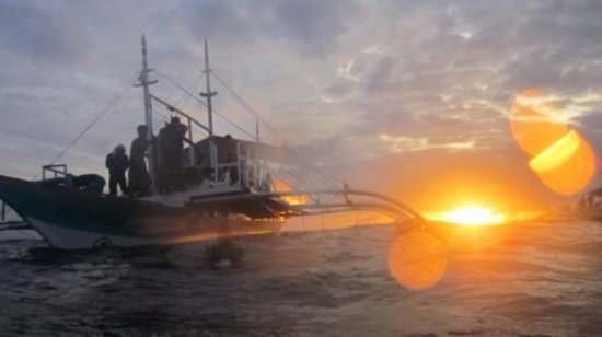 Malapascua Island, Filipinas:  sunset diving with johandive
