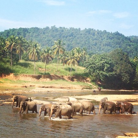 Baba tours are the best! Loved Riu and Sri Lanka!