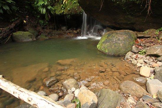 Marigot, Dominica: Nature pool