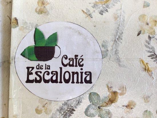 Mesas al aire libre y juegos para ni os picture of for Vivero de cafe pdf