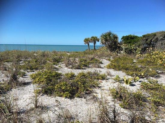 Cape Haze, FL: photo4.jpg
