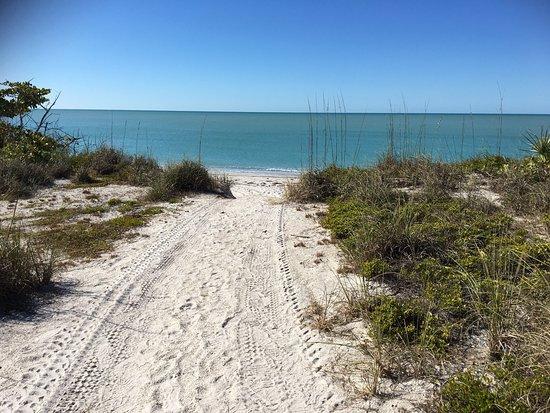 Cape Haze, FL: photo5.jpg