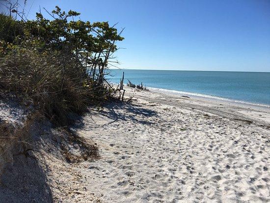 Cape Haze, FL: photo6.jpg