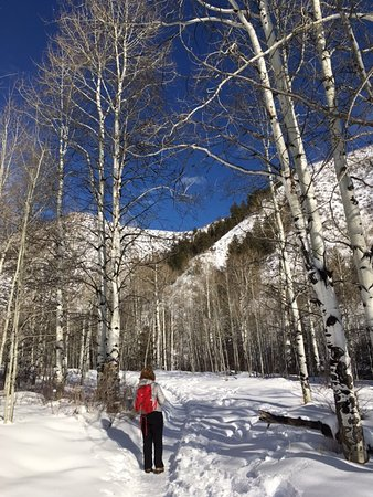 Avon, CO: Fabulous views on the hike at Walking Mountains Science Center.