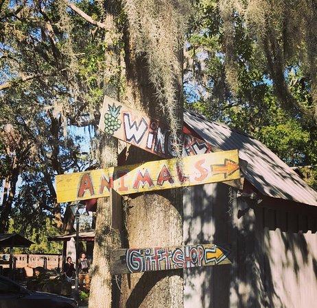 Wadmalaw Island, Carolina Selatan: photo1.jpg