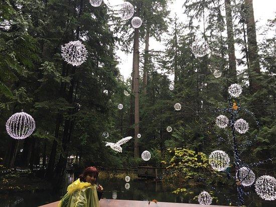 North Vancouver, Canadá: photo3.jpg