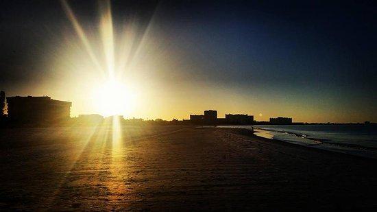 Holiday Inn Sarasota - Lido Beach: Sunrise on Lido Beach