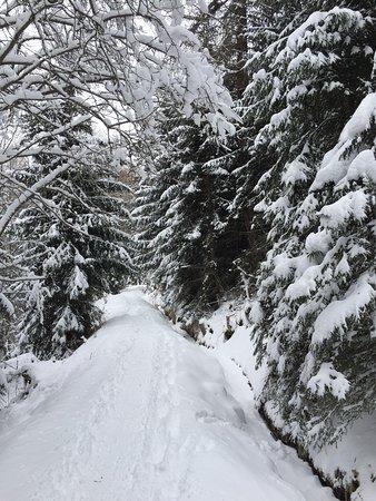 Nendaz, Switzerland: photo1.jpg