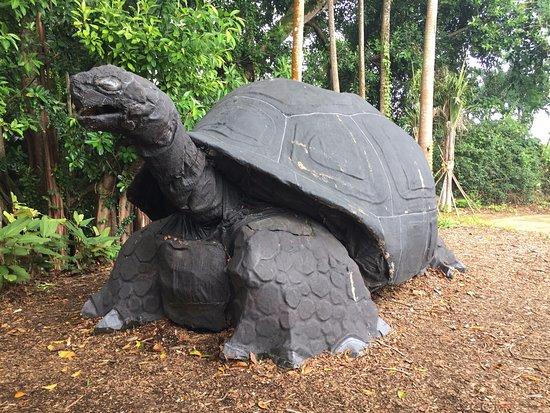 Victoria, Îles Seychelles : Botanical Park