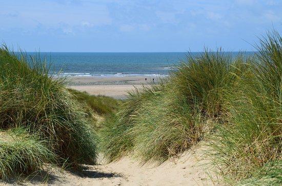 Borth, UK: Path over the dunes