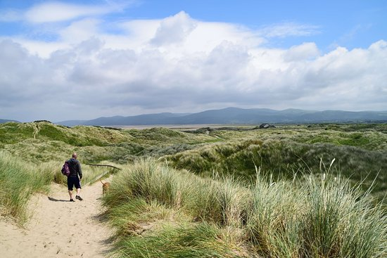 Borth, UK: Path across the dunes