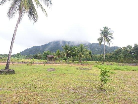 Landscape - Picture of Farm Resort & Spa, Dambulla - Tripadvisor