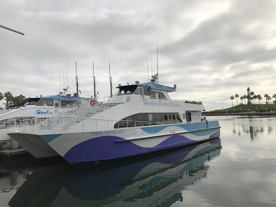 Harbor Breeze Cruises Long Beach Ca