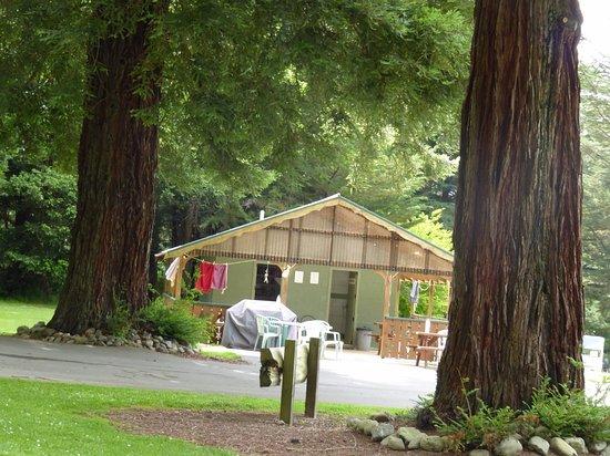 Eketahuna, New Zealand: The amenities block - simply adequate ...