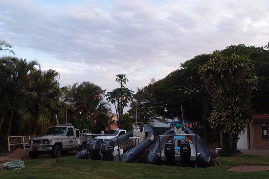 Umkomaas, Zuid-Afrika: Las camionetas y zodiacs con las que vamos al agua