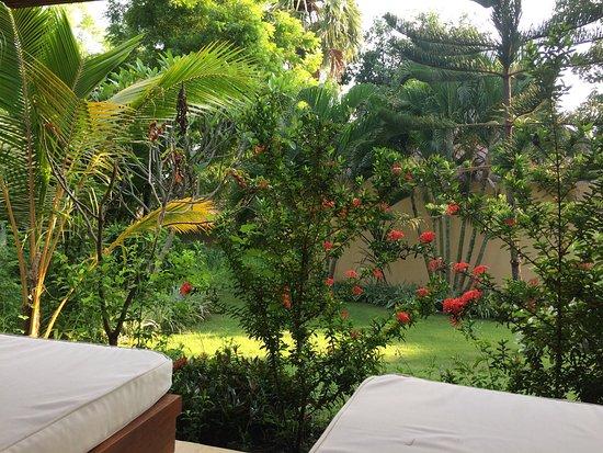 Kubu, Indonezja: photo0.jpg