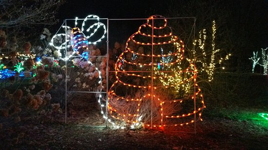 Montgomery, NY: Christmas 2016 Bee and Skep