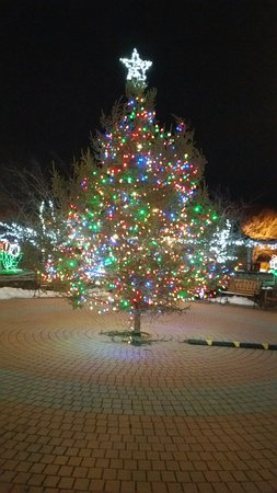 Montgomery, NY: Christmas 2016 Main Tree