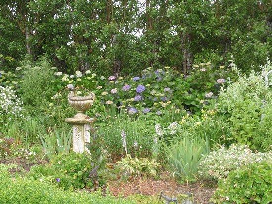 Folster Gardens B & B accomodation: White garden