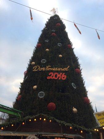 dortmund christmas market the largest christmas tree in the world - Biggest Christmas Tree In The World