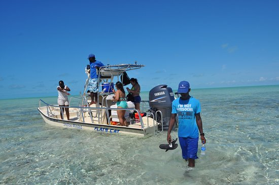 South Caicos: Looking for starfish