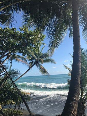 Puerto Jimenez, Kostaryka: photo2.jpg