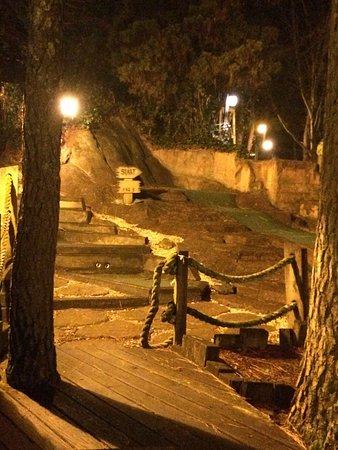 Williamston, Karolina Północna: Night photos of Deadwood