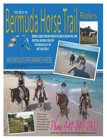 Warwick Parish, Bermuda: Trail Rides Group and Private trail rides are available at flexible times. All are welcome wheth