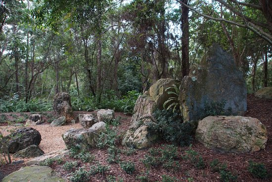 I really enjoyed the rock gardens, the different types of