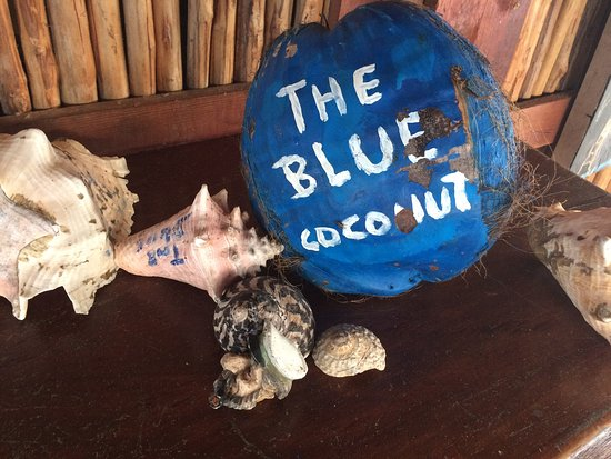 Isla Solarte, Panama: The Blue Coconut