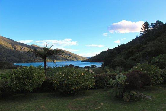 Endeavour Inlet Picture