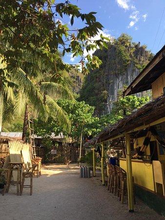 Bamboo Billabong Hostel