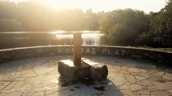 ‪Wombat Flat Mineral Spring‬