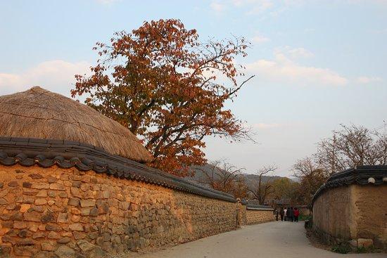 Andong, Νότια Κορέα: 河回村