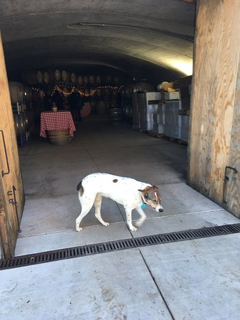 Cloverdale, Kalifornien: J. Rickards Winery